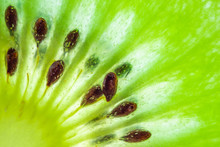 Fresh Kiwi Fruit Slices Closeu...