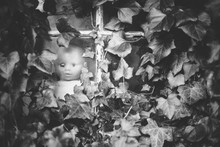 Black And White Image Of A Creepy Baby Doll At The Window Of An Ivy Clad Abandoned Building.