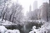 Fototapeta Nowy Jork - A snowy day in New York