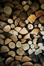 Stacks Of Wood In A Shed