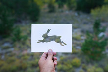 Steal Silhouette On Mountain Background