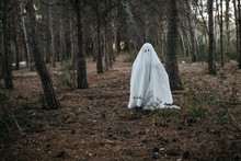 Spooky Ghost In Forest.