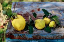 Fresh Organic Quinces