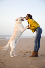 Young Woman On The Beach With Big White Dog
