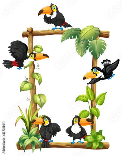 Staande foto Kids Toucan on wooden frame