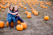 Two Sisters In A Pumpkin Patch