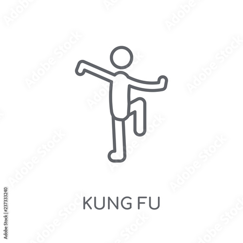 Photographie  kung fu linear icon