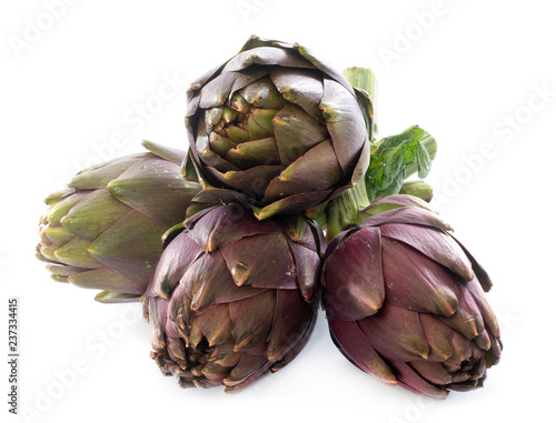 Photo group of purple artichoke