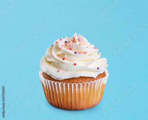 Cupcake on a blue background. Canvas Print
