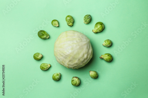 Photo Stands Brussels Cabbage and brussel sprouts on color background, flat lay