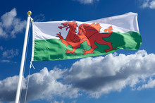 WELSH RED WHITE AND GREEN NATI...