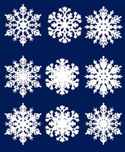 Nine White Snowflakes Collecti...