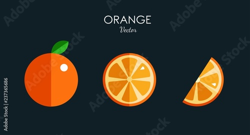Vászonkép Orange citrus vector icons . Modern Flat style design