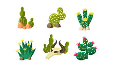 Cactuses And Buffalo Skull Set...