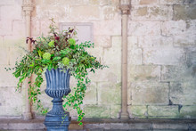 Stone Vase Planter With Fustian Green Flowers And Cascading Green Ivy And Leaves. Grey Cobble Stones. Gorgeous Design In Front Of Medevial Wall With Coloumns. Selective Fovus, Copy Space.