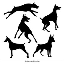 Dog Jumping. Isolated Silhouet...