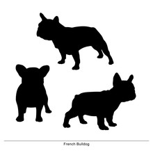 French Bulldog Breed Dog. Vector Silhouette Of The Dog