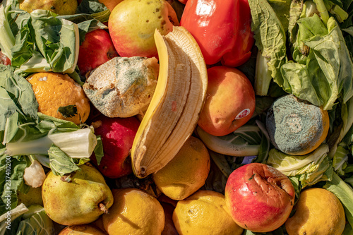 Fotografie, Tablou  Rotting and moldy fruit and vegetables in a heap.