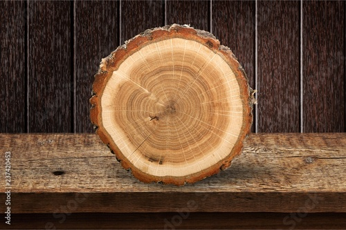 Wooden log isolated on white background Tableau sur Toile