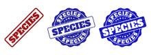 SPECIES Scratched Stamp Seals In Red And Blue Colors. Vector SPECIES Labels With Grainy Surface. Graphic Elements Are Rounded Rectangles, Rosettes, Circles And Text Labels.