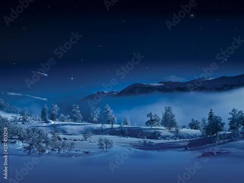 Canvas Prints Night blue Frozen winter landscape