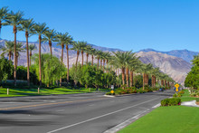 Palm Trees Line The Landscape On California Highway 111 In The City Of Indian Wells In The Coachella Valley