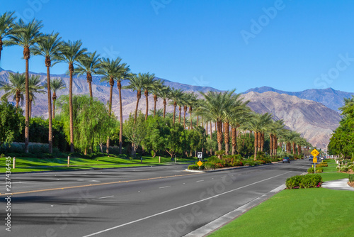 Fotografie, Obraz  Palm trees line the landscape on California Highway 111 in the city of Indian We