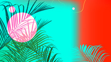 Contrast Design Tropical Palm Tree, Template Bakground