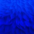 canvas print picture -  Blue Floral pattern. Decorative background