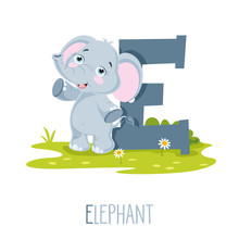 Vector Illustration Of Alphabet Letter E And Elephant