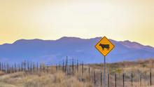 Cattle Crossing Road Sign In Highway 68 Utah