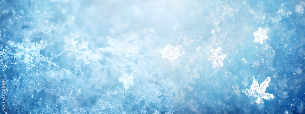 Fototapeta Snow in winter close-up. Macro image of snowflakes, winter holiday background.