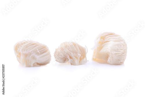 Fotografía  lion mane mushroom isolated on white background.