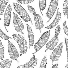 Seamless Banana Leaves Pattern For Fashion Textile, Black Line Plant Vector Illustration For Your Design.