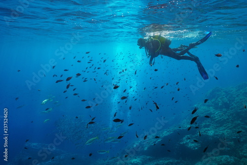Scuba diver on water surface look at shoal of fish underwater, Mediterranean sea, Medes Islands, Costa Brava, Spain