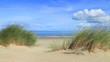 Dünen und Strand bei Renesse