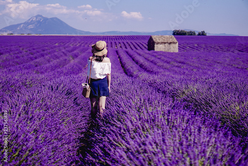 Deurstickers Lavendel Lavender field - Valensole, France - So violet! Enjoy active summer on the lavender field. One touristic place is in Valensole, France. So impressive! nThe violet everywhere!