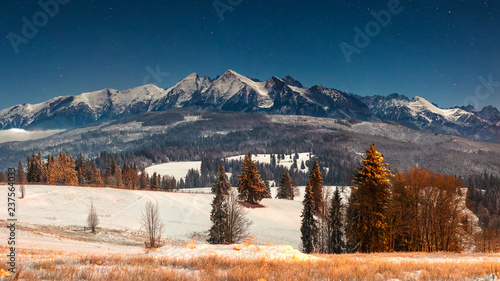 Poster Bleu nuit Landscape of winter mountains at night