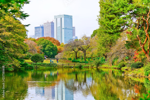 Foto op Canvas Aziatische Plekken View of the beautiful garden with colorful trees in autumn at Shinjuku Gyoen Garden in Tokyo, Japan.