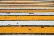 Modern Yellow And White Zebra Crossing In The Autumn Russian City