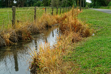 Herbicide Use On A Drainage Ditch That Drains Into An Estuary, New Zealand.