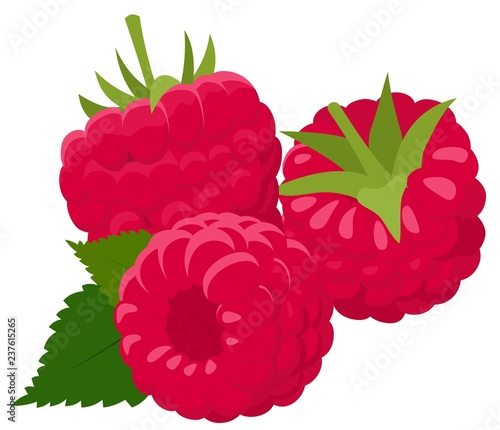 Raspberry isolated on white background Fototapet