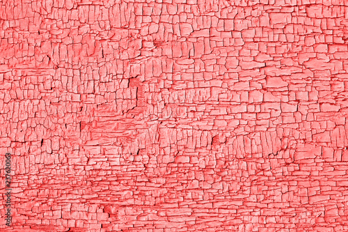 living-coral-color-of-the-year-2019-old-cracked-paint-on-wooden-table-weathered-texture-rustic-background