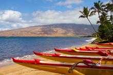 Maui Outrigger Boats