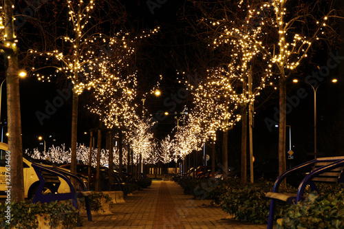 Photo  A beautiful christmas alley in the Frydek Mistek city