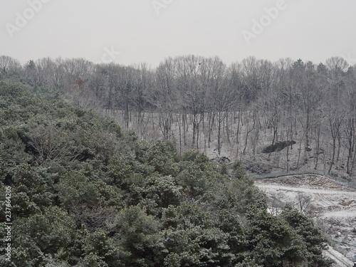 Fotografía  한국 청주시의 눈덮힌 겨울 산