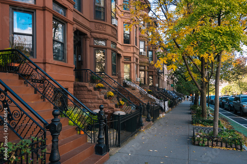 Brownstones and autumn color in Park Slope, Brooklyn, New York City - 237674634