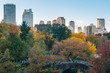 Autumn color and the Gapstow Bridge, in Central Park, New York City