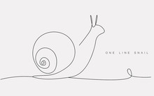 One Line Drawing Snail Animal ...