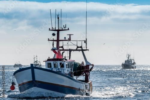 Guilvinec, retour de pêche, Bretagne, Finistère, France.